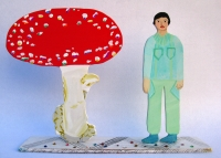 http://alexandralakin.com/files/gimgs/th-15_15_red-mushroom.jpg